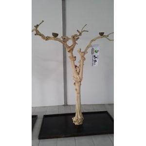 Kerajinan Kayu Javawood Playstand Coffee Tree Bird Perch Multi Branches Parrot Stand Java Wood Branch