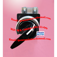 Hanyoung CR-253-3 Selector Switch