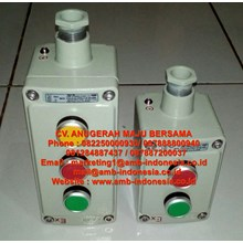 Push Botton Control Unit Explosion Proof Control Unit Push Botton