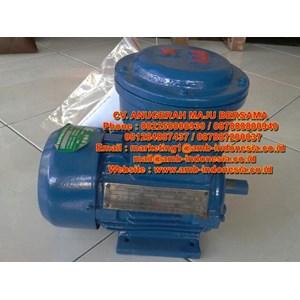 Motor Explosion Proof Elektrik Motor Dinamo Exproof Jakarta Indonesia
