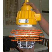 Beli Lampu Gantung Pendant Ex Proof Warom BAD 125 W BAD61 HRLM BCD100 BCD200 BCD250 BCD400  4