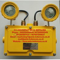 Lampu Led Emergency Mata Kucing Warom BAJ52