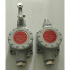 HELON dLXK Series Explosion Proof Position Limit Swiches  5