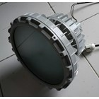 HELON HLBD05 Series LED Explosion Proof Spot Pendant Lighting  4