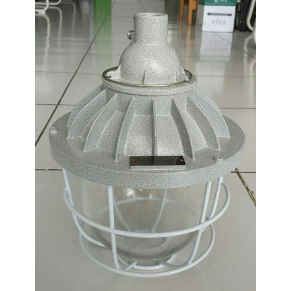 HELON BAD52 Series Explosion Proof Pendant Lamp Downlight