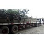 Sewa Trailer Flatbed 40 ft Surabaya 1