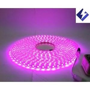 Sell led light strip hose 220v pink from indonesia by toko sinar led light strip hose 220v pink sciox Images