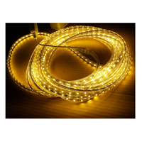 Sell led strip lamp 220v hose 10 meters from indonesia by toko sell led strip lamp 220v hose 10 meters 2 sciox Images