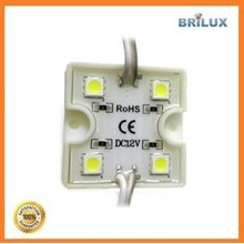 Lampu LED Module Sanan 4 Mata Smd 5050 12V Waterproof dan Resin