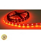 Lampu Led Brilux LED Strip SMD 5050 12V 300 LED - Indoor IP20 5