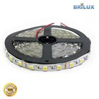 Lampu Led Brilux LED Strip SMD 5050 12V 300 LED - Indoor IP20 2