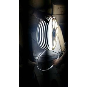 From LED Neon Flex 10W 12V 1