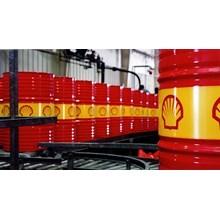 Oli Shell Drum