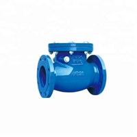 Swing Check Valve SFE-PN16-GG25