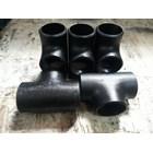 Carbon Steel Tee SCH40 3