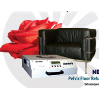 Pelvic Floor Rehabilitatin Therapy