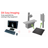 Digital X Ray Imaging Colenta