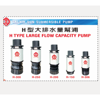 Large Flow Capacity Pump Type H