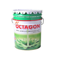 Wall Paint Octagon
