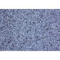 Lantai Granit YXHW106-2 1