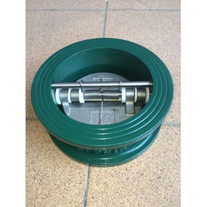 Water Check Valve