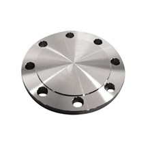 Flange Buta Blind Flange Stainless Steel