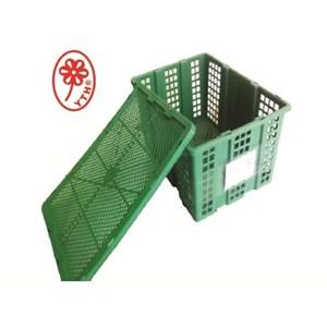 Keranjang buah jumbo YTH 30 warna hijau