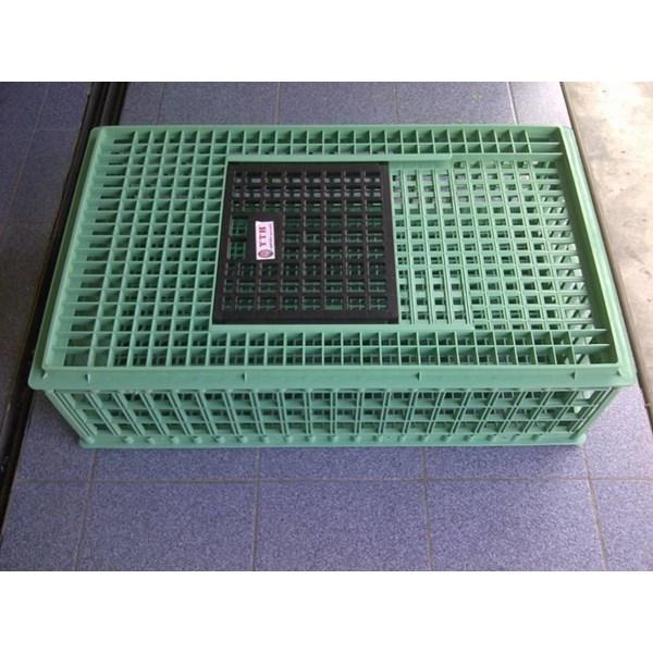 Keranjang plastik-Keranjang Ayam Jumbo YTH-42 Proses Hijau ( Grade Biasa ) k