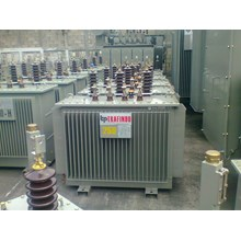 Trafindo Distribution Transformer