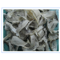 Sell Swiflet Bird's Nest from Indonesia (Grade : Raw)