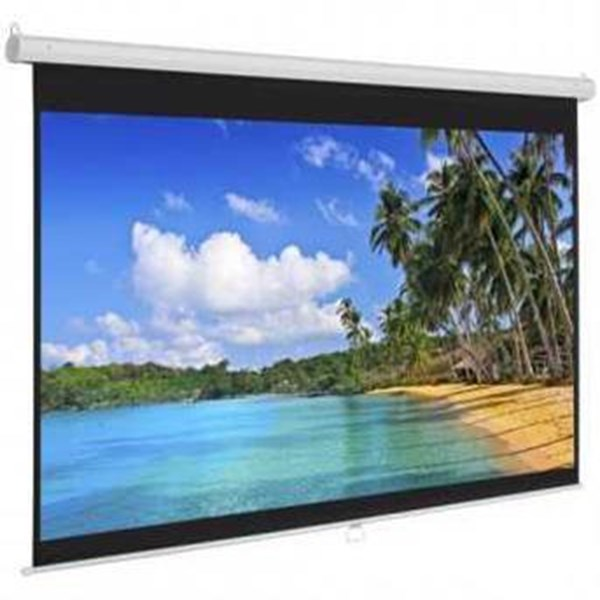 BRITE SCREEN MAS-2424
