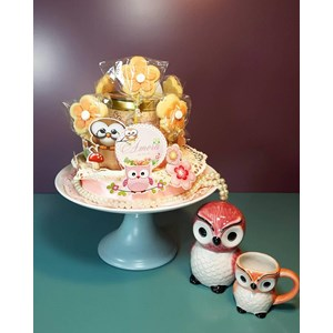 plate cake owl + mug owl