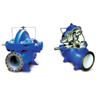 Double Suction Pump 1