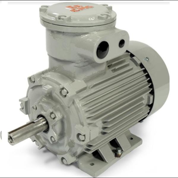 Explosionproof Motor Pump