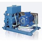 Liquid Ring Vacuum Pump 2
