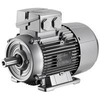 Motor Siemens  SIMOTICS DP Kelautan Motors Conveyor Motor