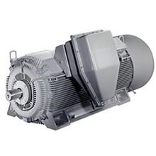 SIMOTICS HV Asynchronous Squirrel Cage Compact Motors (IEC)