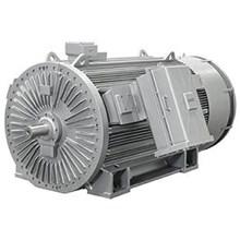 SIMOTICS HV Asynchronous Squirrel Cage Compact Motors (IEC) Loher VARIO
