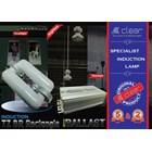 Lampu bohlam Induksi kotak 250 Watt + Ballast Clear Energy 2