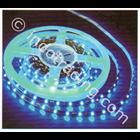 Lampu LED Strip Cardilite SMD 5050 Mata Besar  3