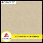 Granito 40X40 2