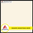 Granito 40X40 3