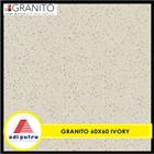 Granito 60X60 1