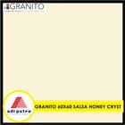 Granito 60X60 5