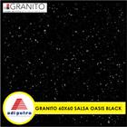 Granito 60X60 4