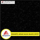 Granito 60X60 6