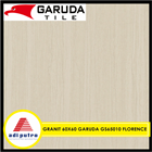 Garuda 60X60 8