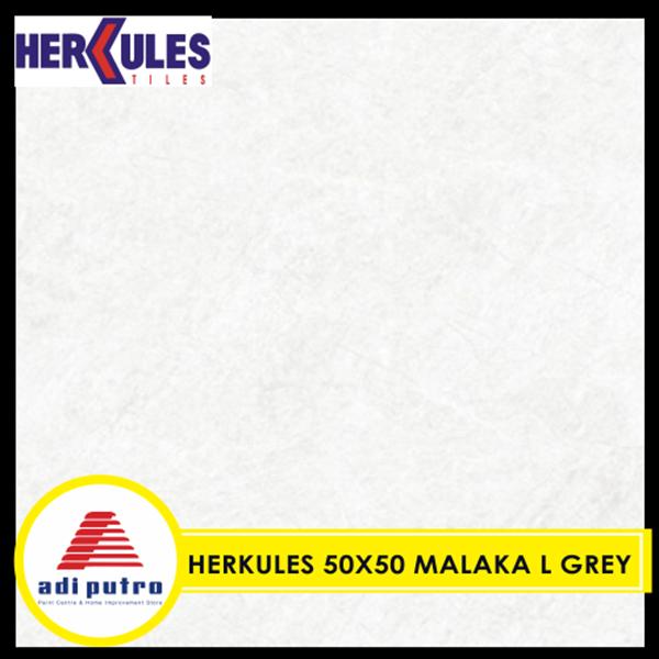 Herkules 50X50