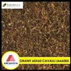 Granit Cavalli 60X60 1