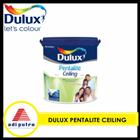 Cat Dulux 5